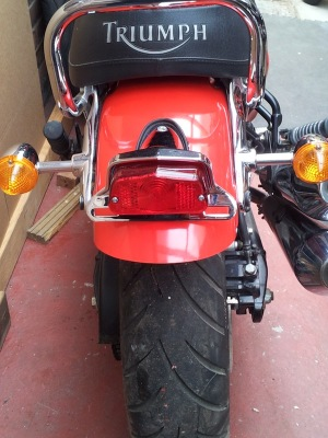 Rear Mudguard & Light